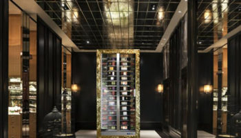 Teca-Vino-multi-temperatire-wine-display-cabinet