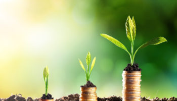 Growing Money – Chart In Rise
